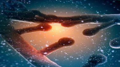 Photo of Las personas con sangre RH negativo tendrían ADN extraterrestre