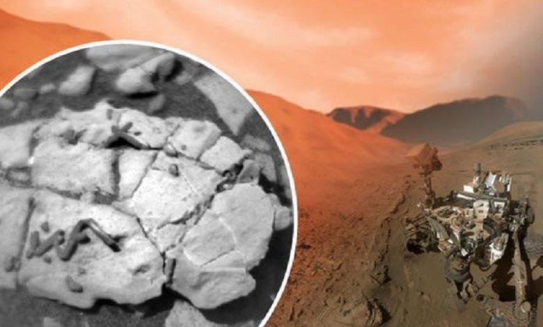Vida en Marte El explorador de la NASA encuentra fósiles únicos en el planeta rojo