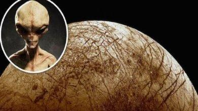 Científicos descubren nueva evidencia de vida en la luna de Júpiter Europa