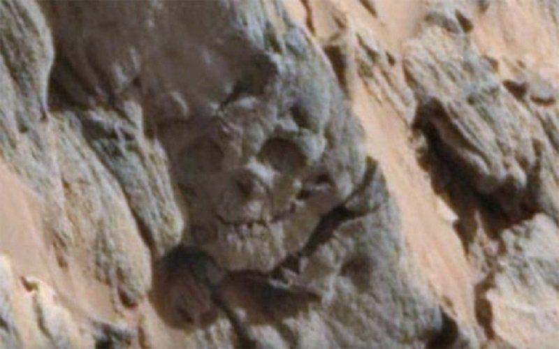 Cráneo fosilizado en marte