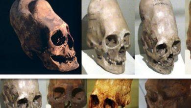 Photo of Pruebas de ADN revelan de dónde vienen las Calaveras alargadas