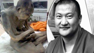 Photo of ¿Este monje momificado de 200 años que meditaba estaba vivo cuando lo encontraron?