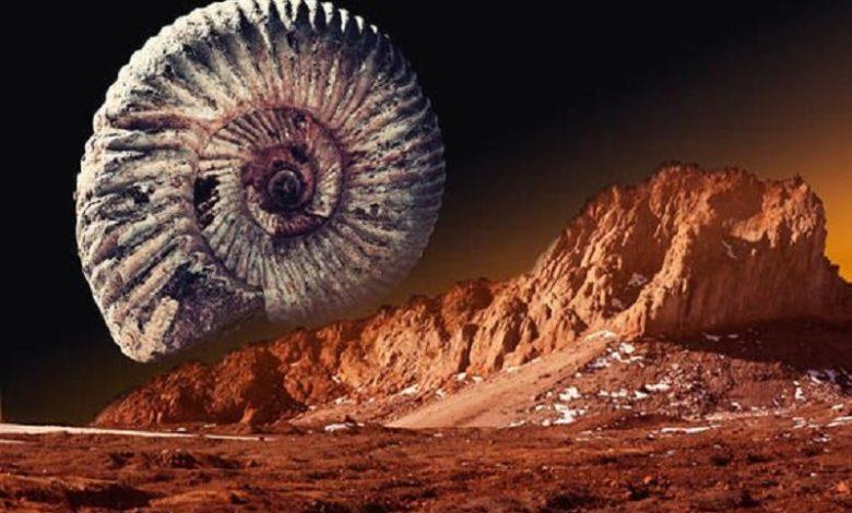 Vida en Marte Ciertas rocas prehistóricas contienen rastros de vida alienígena antigua