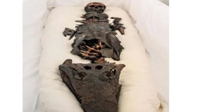 La momia egipcia bicéfala que despertó el pánico en el palacio otomano