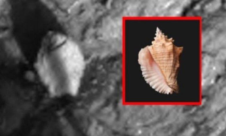 fotos de Marte de la NASA