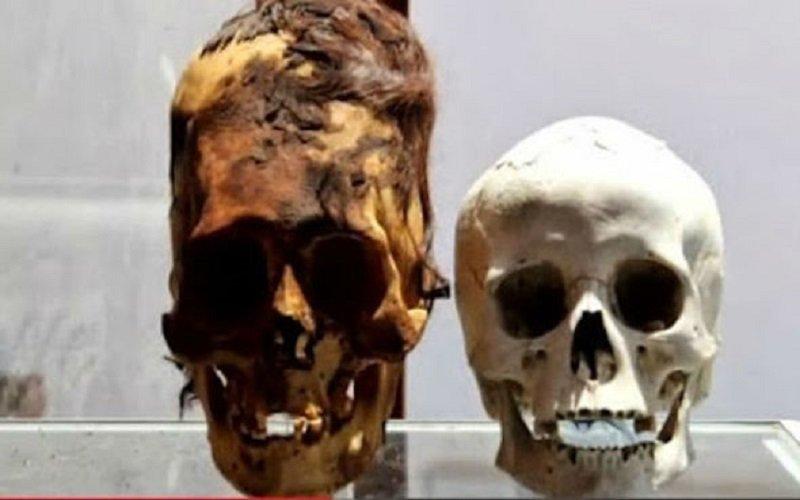 Photo of Cráneos misteriosos encontrados en la Antártida podrían ser de «extraterrestres»