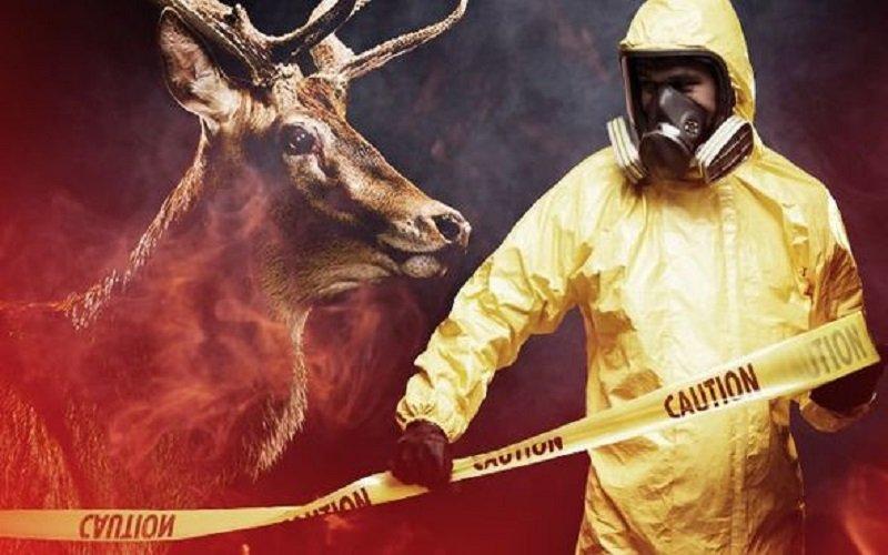 Photo of Enfermedad mortal de los ciervos zombis: El brote «puede propagarse a los seres humanos»