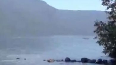 Photo of El monstruo del Lago Ness de Argentina: Criatura gigante filmada en el lago donde murió un turista británico