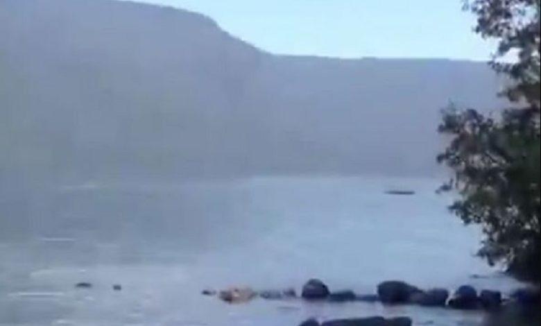 El monstruo del Lago Ness de Argentina