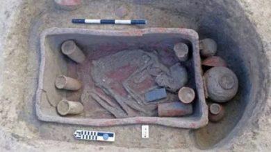 Photo of Antiguo Egipto: arqueólogos descubren 83 tumbas raras con un tesoro de artefactos