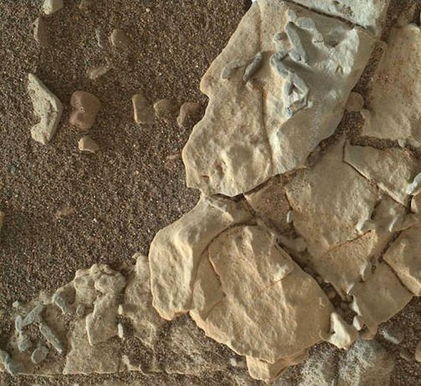 fósiles de algas en Marte