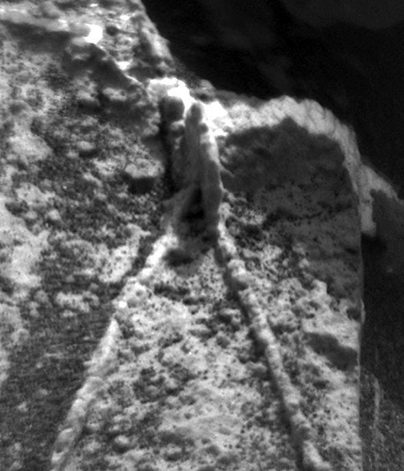 fósiles en el cráter gale en Marte