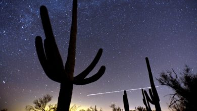 Photo of 15 avistamientos de OVNIs en Tucson Arizona ¿Qué sucede ahí? 👽 🌠 🚀