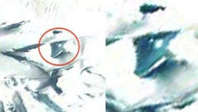 Photo of Afirman que los OVNIs alienígenas encontrados en la Antártida son 100% reales