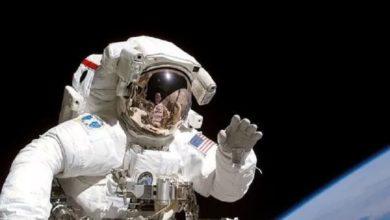 Photo of ¿La misión a Marte está en peligro? Los cerebros de los astronautas se expanden en micro-gravedad