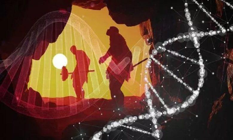 Un grupo de Randy Neanderthals contribuyó con TODO el ADN de los humanos modernos