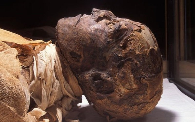 Ramses-III-was-brutally-murdered
