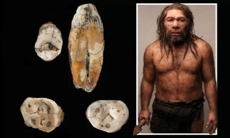 Gran revelación Los neandertales se cruzaron con los humanos modernos