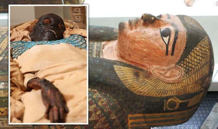 """Antiguo Egipto: Muerte """"violenta"""" de Takabuti por un maníaco que empuñaba un hacha al descubierto después de 2.600 años    Ciencia    Noticias"""